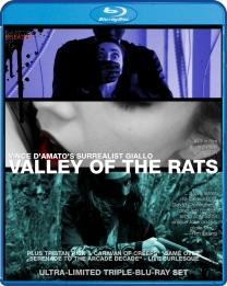 Blu-Ray_Valley_Caravan